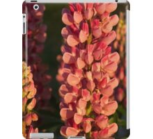 Hot Pink Lupines From My Mother's Garden iPad Case/Skin