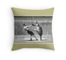 Boxing Kangaroo Throw Pillow