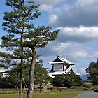 Kanazawa Castle,  Japan. by johnrf