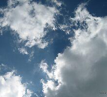 Heart Clouds by Debbie Robbins