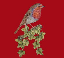 Christmas Robin and ivy leaves illustration by pollywolly