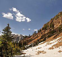 Red Pine Lake Trail by Ryan Houston