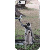 Sri Lankan Monkeys iPhone Case/Skin