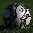 Fifa South Africa Soccer Ball by Laura Cooper