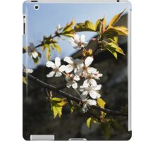 Facades and Fruit Trees - the Church and the Plum iPad Case/Skin