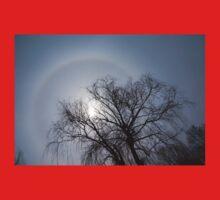 Sun Halo, Trees And Silver Gray Winter Sky Baby Tee