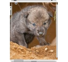 Timber Wolf Pup iPad Case/Skin