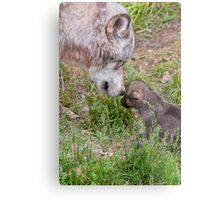 Timber Wolf And Pup Metal Print