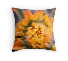 Indian Paintbrush Headfirst Throw Pillow