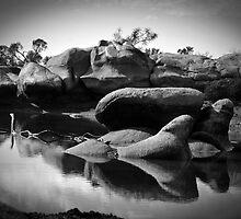 Pindaring Rocks ~ Greenough River ~ II by Pene Stevens