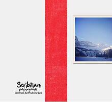 Boom Lake, Banff National Park by Chris Patrick Carolan