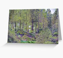 Little port Trees in colour Greeting Card