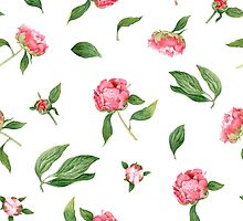 Romantic watercolor Peonies by Alena Tselesh