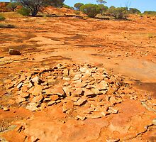 Aboriginal ring of stones, out back Australia by Mary Taylor