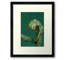 cleaning hardware Framed Print
