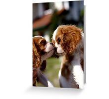 Siblings Love Greeting Card
