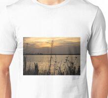 Reeds at Sunset Unisex T-Shirt