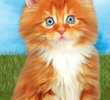 Orange White Kitten Love Blue Eyes Sticker