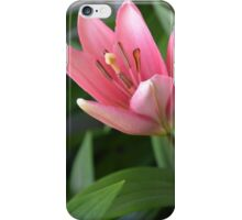 OPENING FLOWER OF LILY. iPhone Case/Skin
