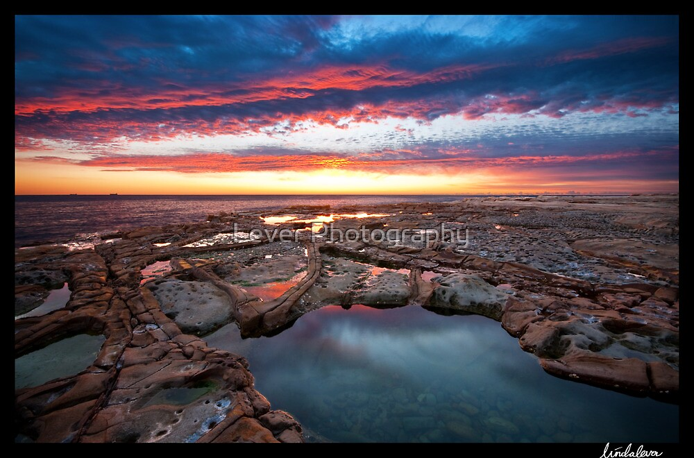 Saphire Pool- Avoca Beach by Lever Photography