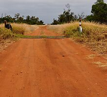 Rexeen - The Road to Coocoran Lake NSW Australia by Bev Woodman