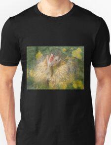 Sitting Hen in Dandelions T-Shirt