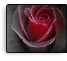 """Fine art. Nature. Rose """"Red PASSION 2"""". Oil painting. Canvas Print"""