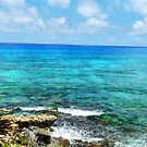 The Waters of Cozumel by photorolandi