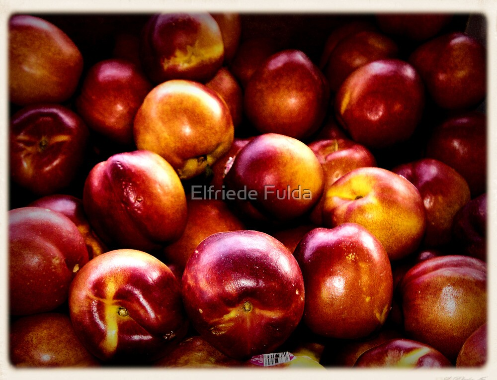 """Peachy"" by Elfriede Fulda"
