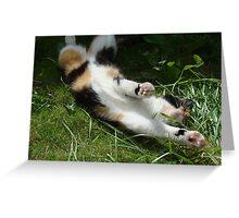 stretch Greeting Card