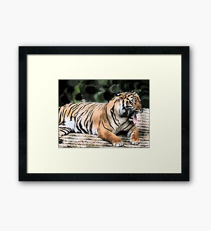 Tiggers Don't Like Honey.... Framed Print