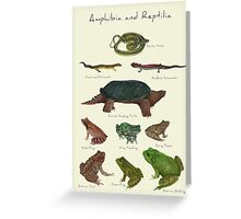 Amphibians and Reptiles Greeting Card