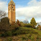 Cabot tower, Bristol, UK by buttonpresser