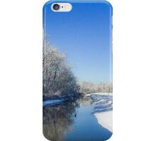 A Study in Blue and White iPhone Case/Skin
