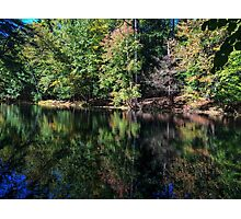 Peace Offering Photographic Print