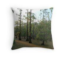 Sundown Swamp - Sam Houston Park Throw Pillow