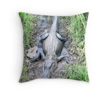 Lounger - Sabine NWR Throw Pillow