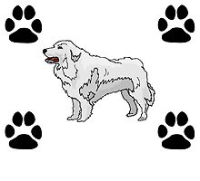 Great Pyrenees by GiftIdea