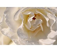 Whiter than white BUT wet! Photographic Print