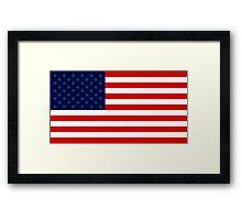 USA flag with hemp leaves Framed Print