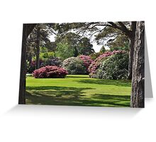 Muckross, killarney, Kerry, Ireland Greeting Card