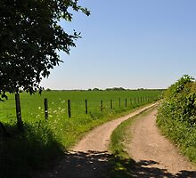 Farmland Fields ~ Park Street, Hertfordshire ~ May 2010 by Samantha Creary