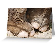 Tip Toe Through the Tulips with Me!           Greeting Card