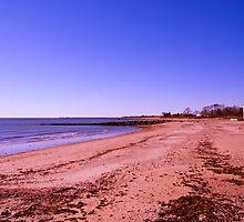 White Sand Beach by JoeGeraci