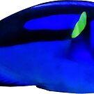 Blue Tang Fish by Susan Savad