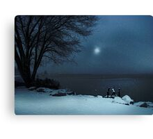 Moonlight Romp Canvas Print