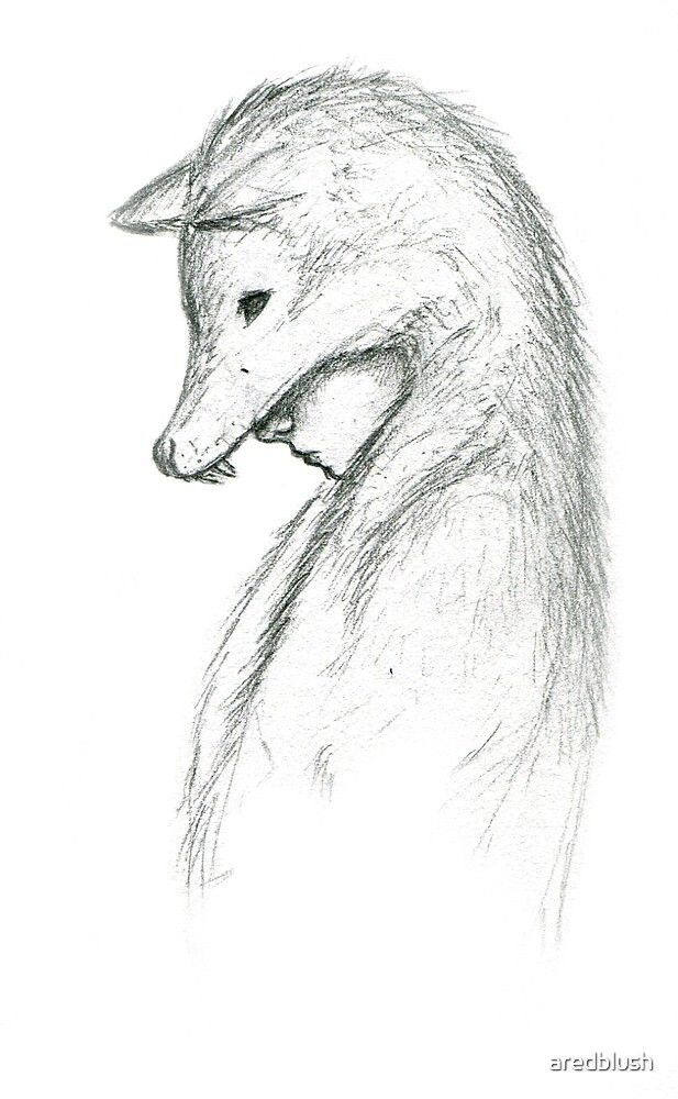 wolfskin by aredblush