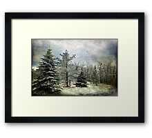 Frosty Framed Print