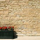 The Geraniums and the Wall by MarjorieB