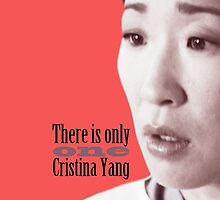 There is only one Cristina Yang. by cristinaandmer